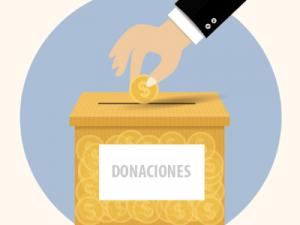 SII: Rebaja de gasto por donaciones para programas de instrucción sólo rige para aquellos realizados en Chile